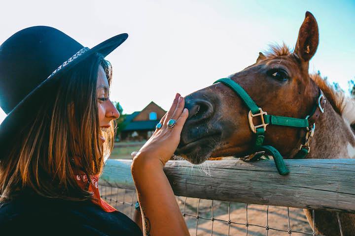 Kamperen bij de boer met paard